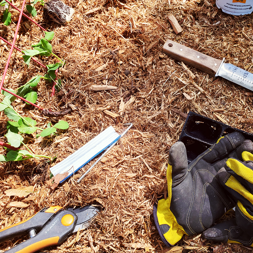 Planting tools on a bed of mulch